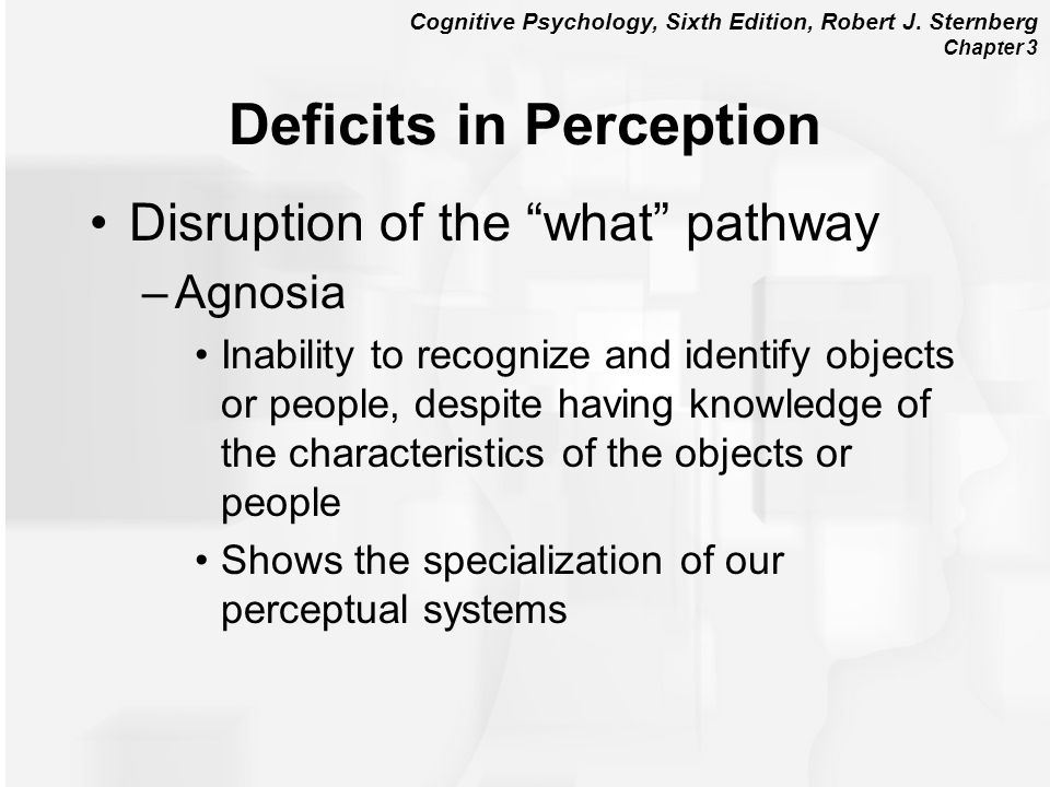 Deficits in Perception