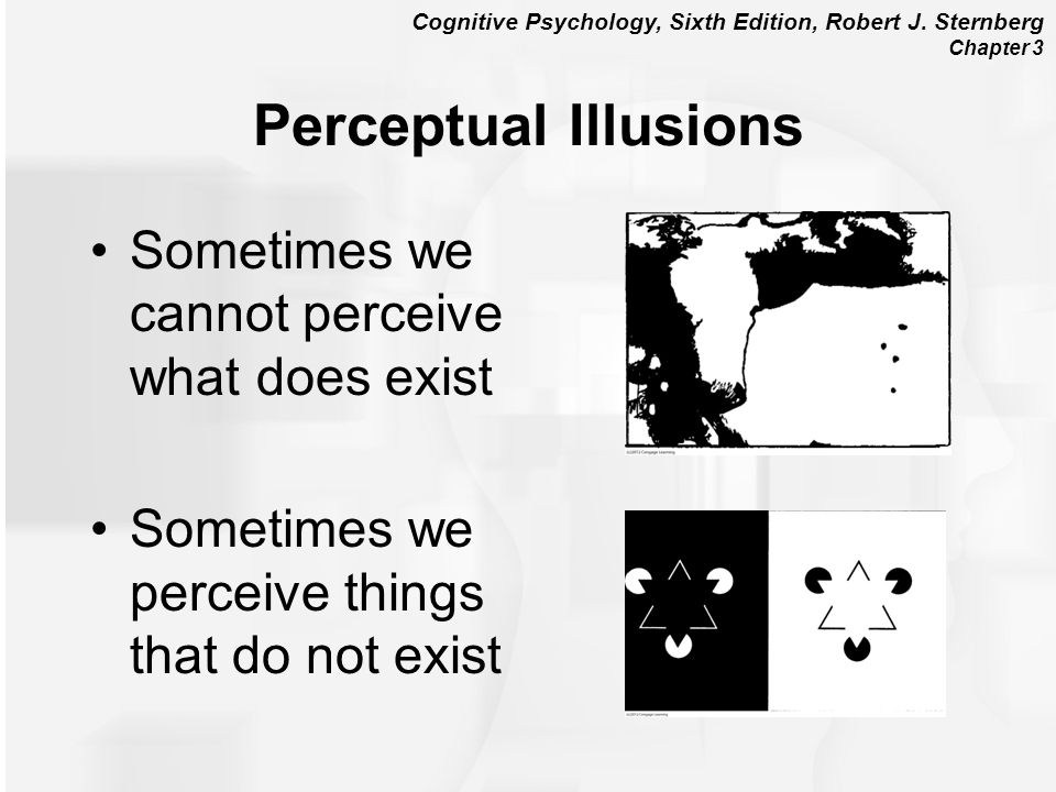 Perceptual Illusions Sometimes we cannot perceive what does exist