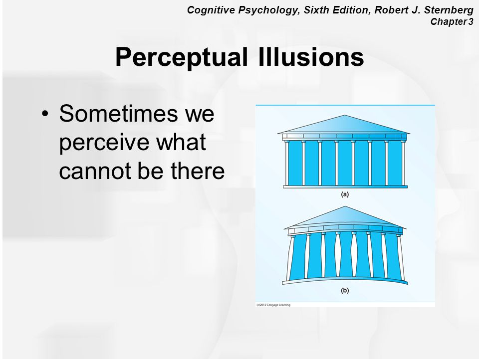 Perceptual Illusions Sometimes we perceive what cannot be there