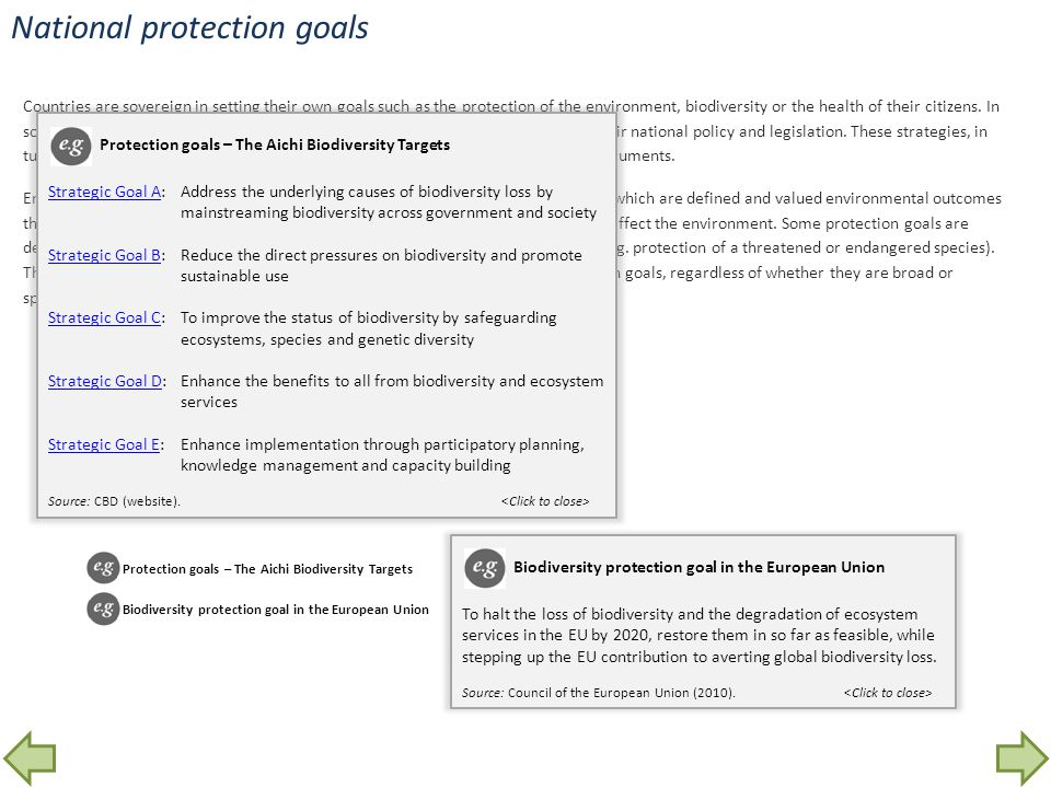 National protection goals