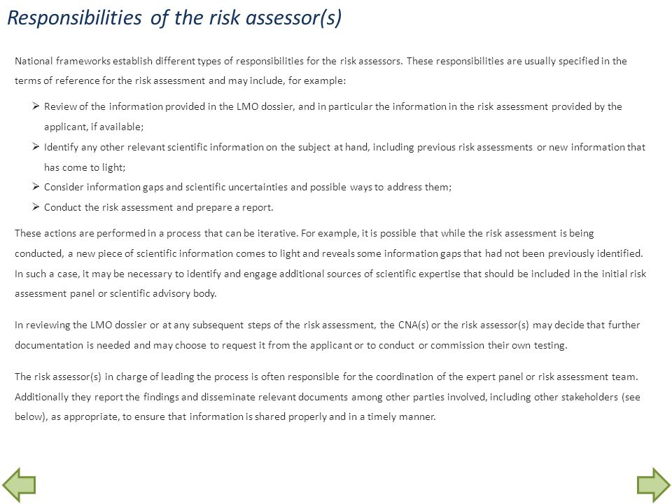 Responsibilities of the risk assessor(s)