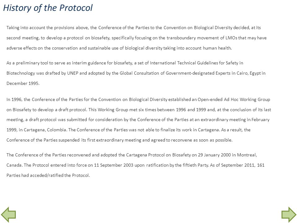 History of the Protocol