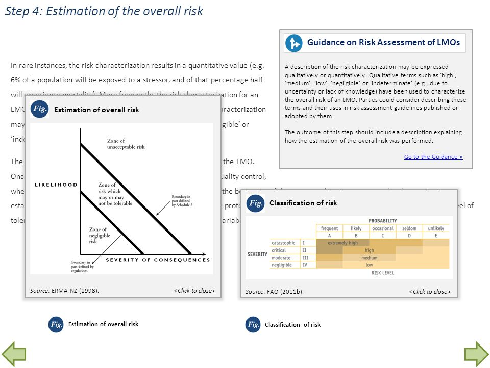 Step 4: Estimation of the overall risk