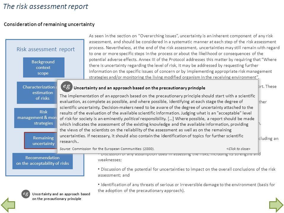 The risk assessment report