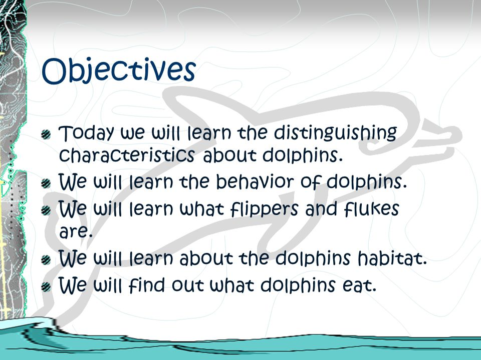 Objectives Today we will learn the distinguishing characteristics about dolphins. We will learn the behavior of dolphins.