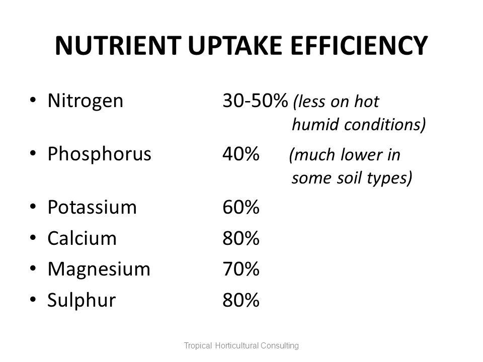 NUTRIENT UPTAKE EFFICIENCY