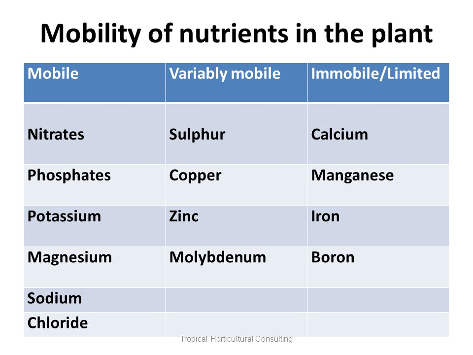 Mobility of nutrients in the plant