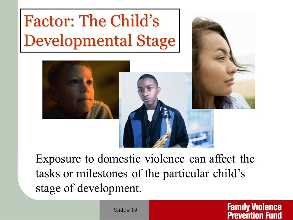 Factor: The Child's Developmental Stage