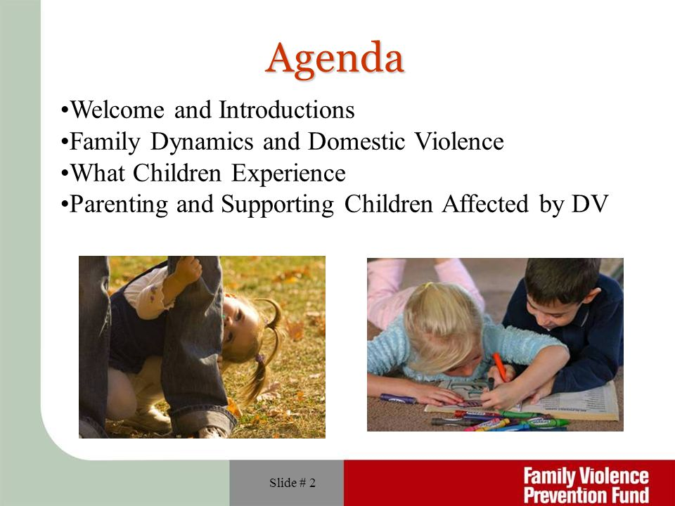 Agenda Welcome and Introductions Family Dynamics and Domestic Violence