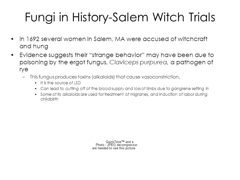 Fungi in History-Salem Witch Trials