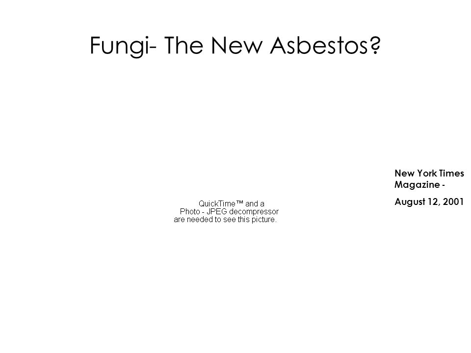 Fungi- The New Asbestos
