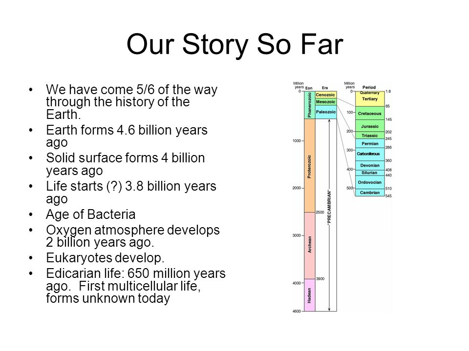 Our Story So Far We have come 5/6 of the way through the history of the Earth. Earth forms 4.6 billion years ago.
