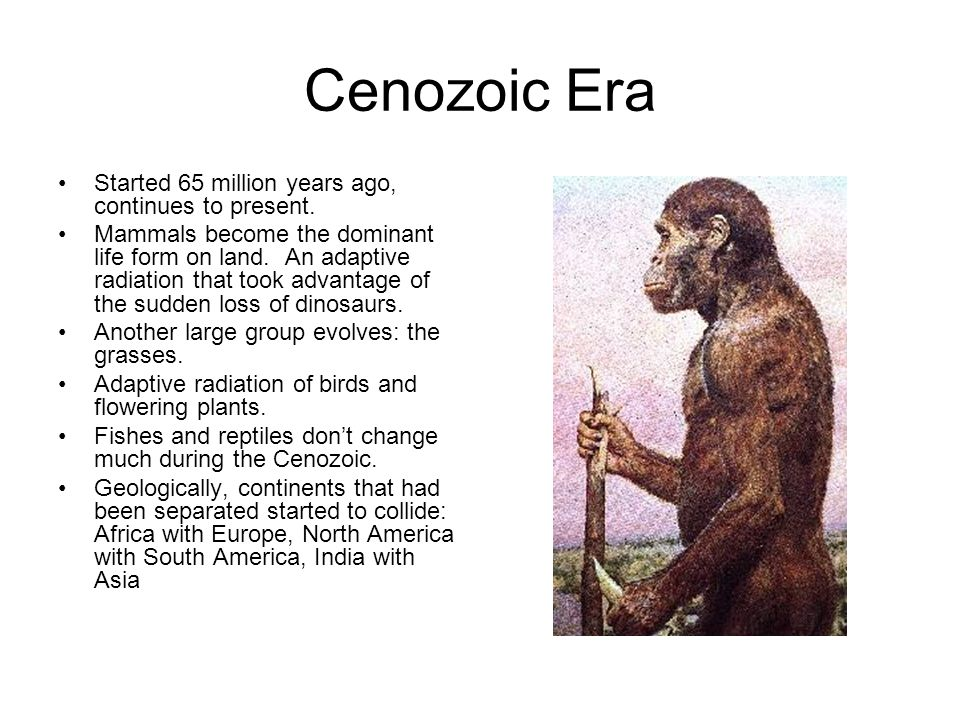 Cenozoic Era Started 65 million years ago, continues to present.