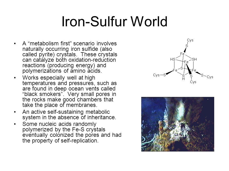 Iron-Sulfur World
