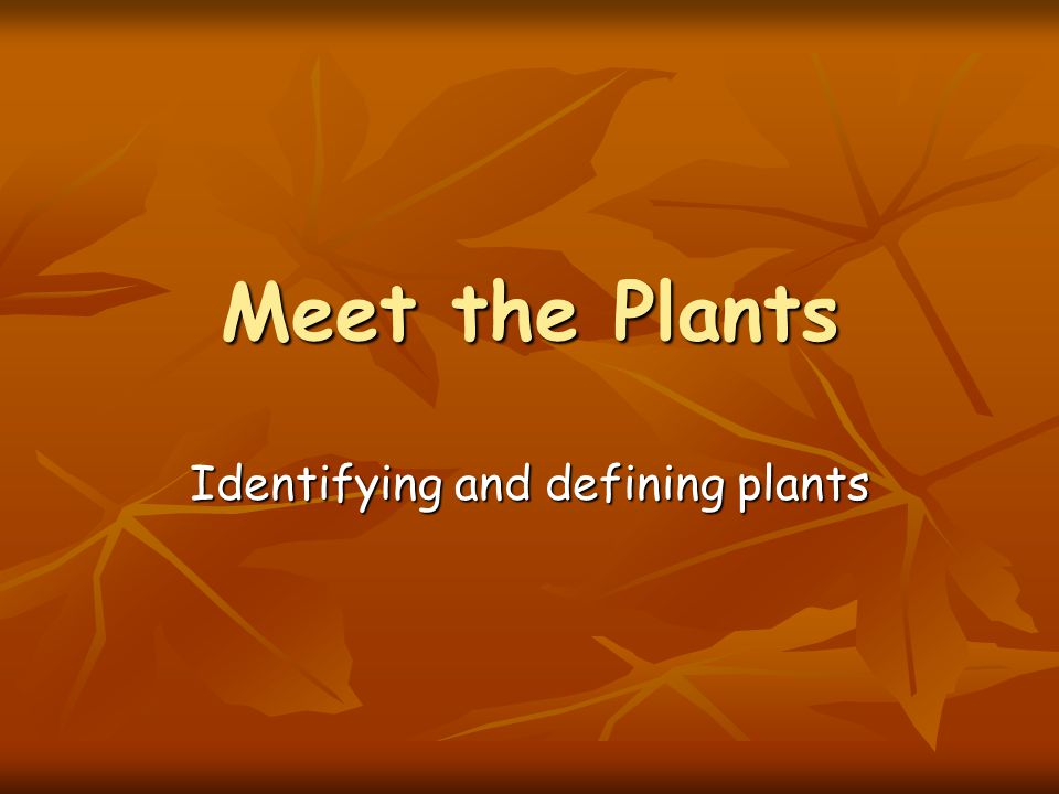 Identifying and defining plants
