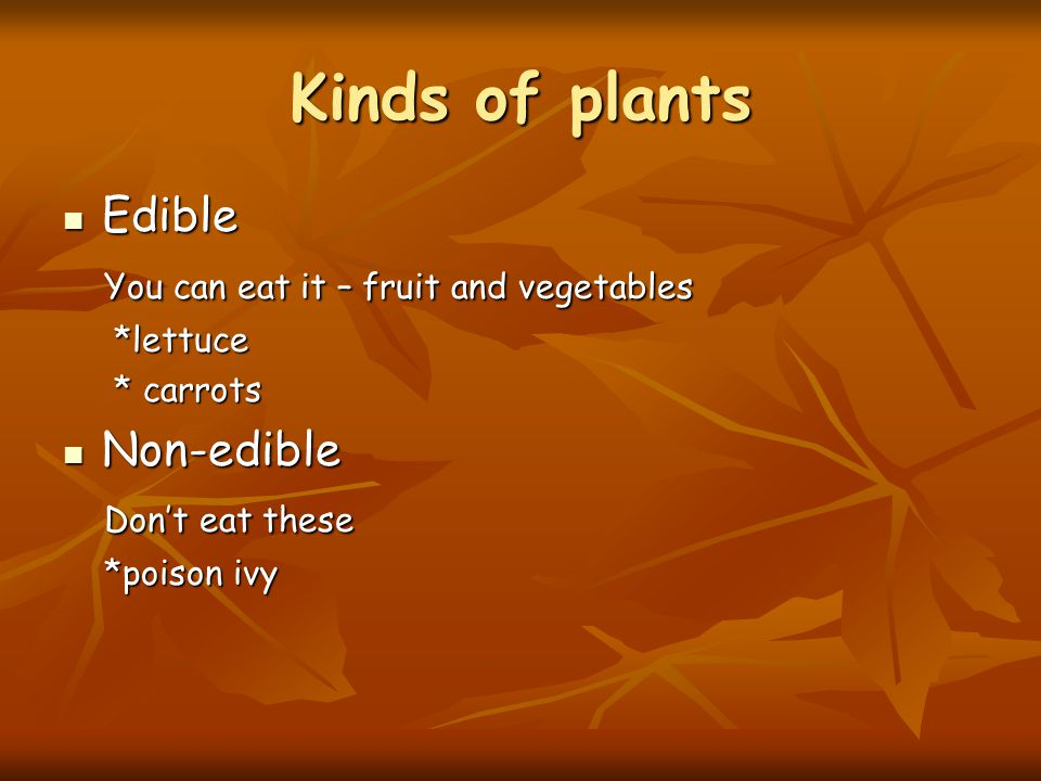 Kinds of plants Edible You can eat it – fruit and vegetables