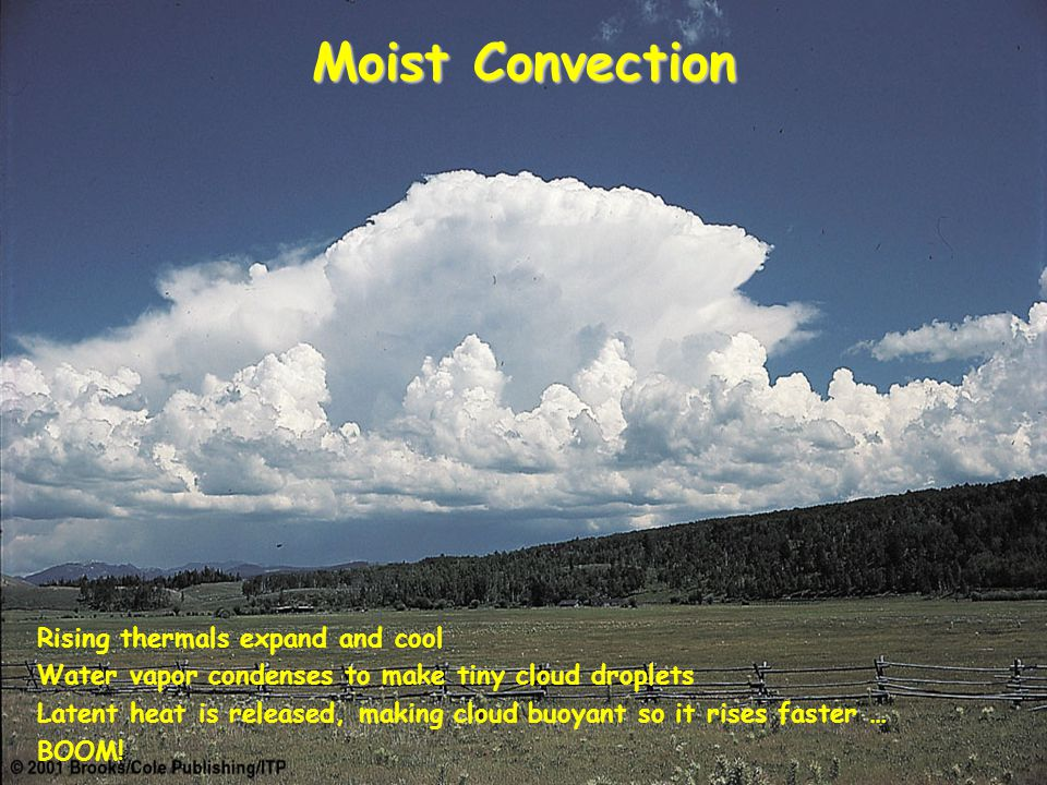 Moist Convection Rising thermals expand and cool