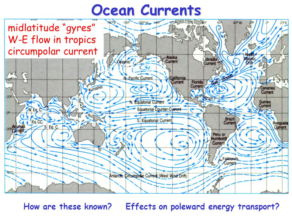 Ocean Currents midlatitude gyres W-E flow in tropics