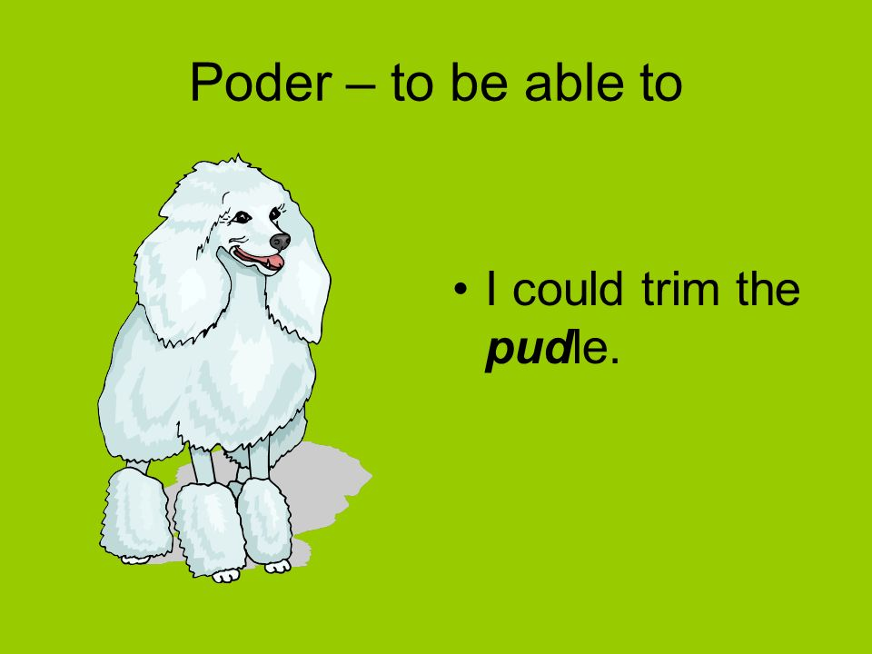 Poder – to be able to I could trim the pudle.