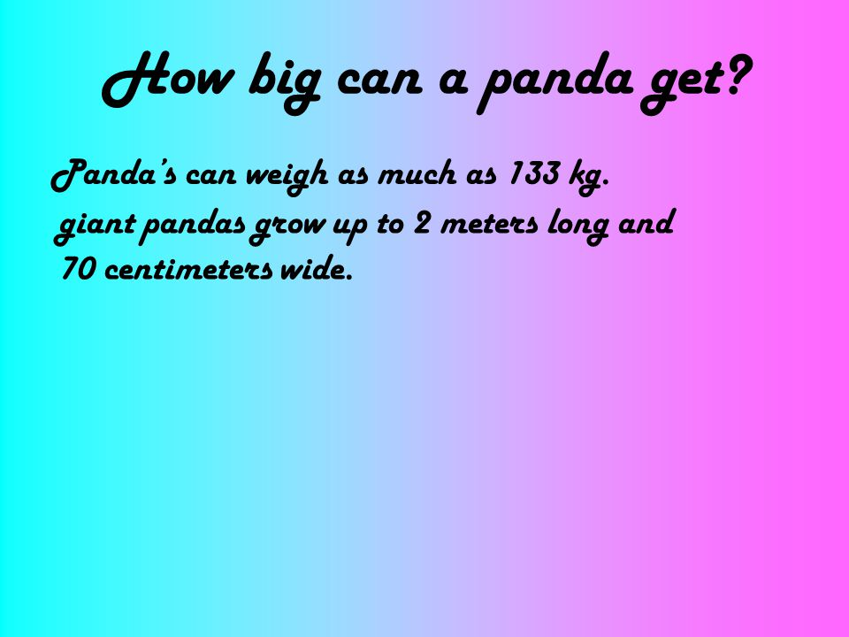 How big can a panda get Panda's can weigh as much as 133 kg.