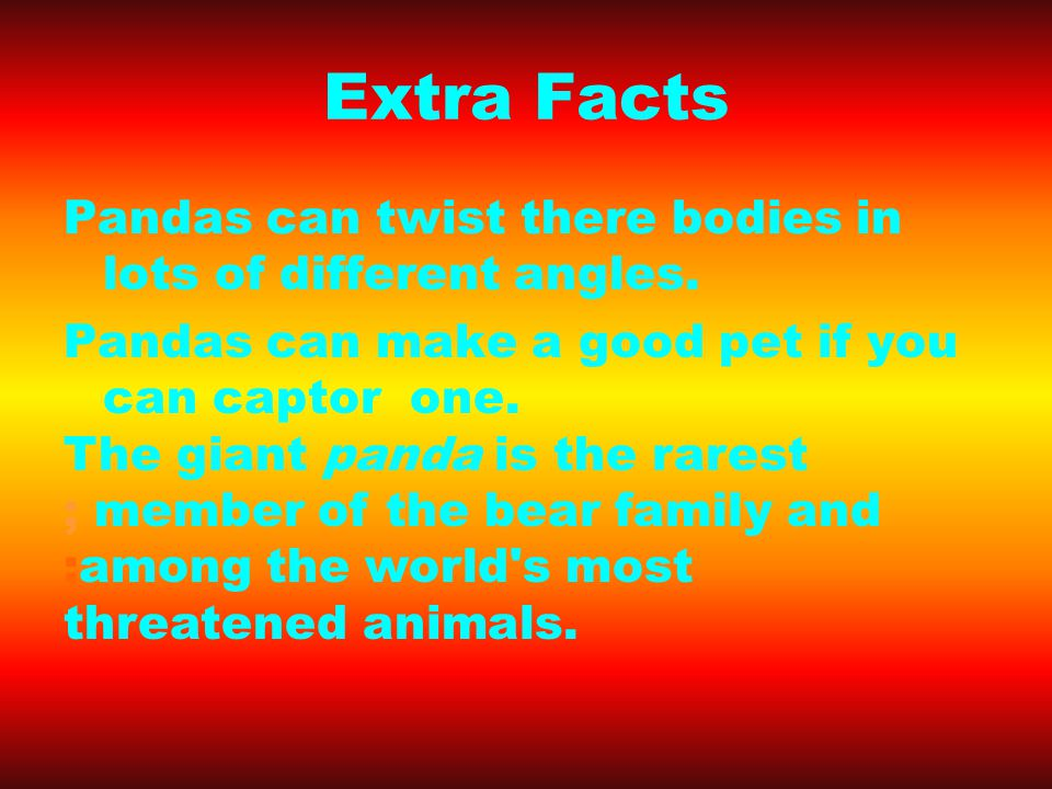 Extra Facts Pandas can twist there bodies in lots of different angles.