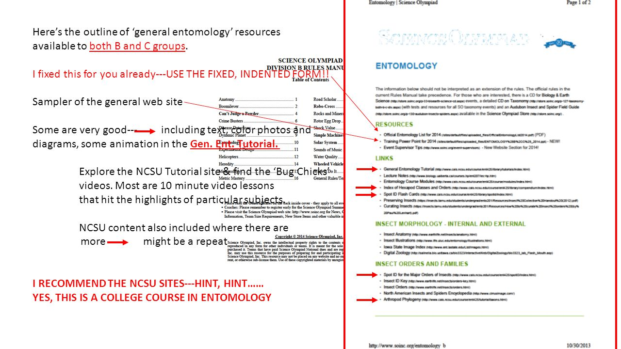 Here's the outline of 'general entomology' resources