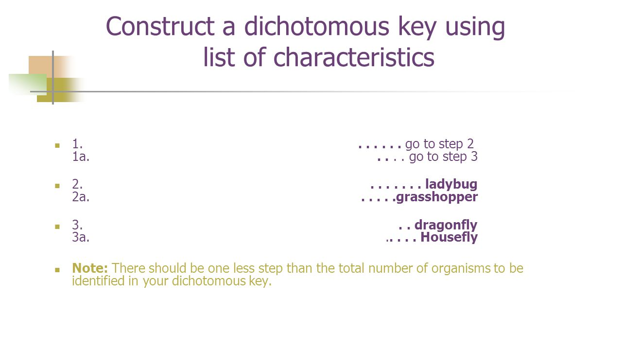 Construct a dichotomous key using list of characteristics