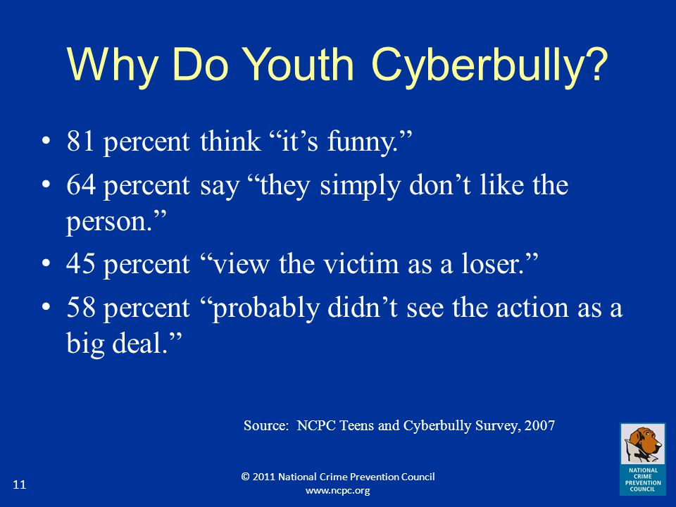 Why Do Youth Cyberbully