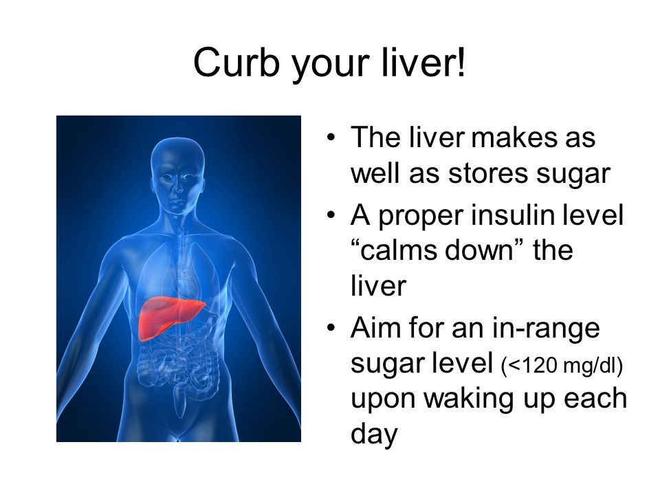 Curb your liver! The liver makes as well as stores sugar
