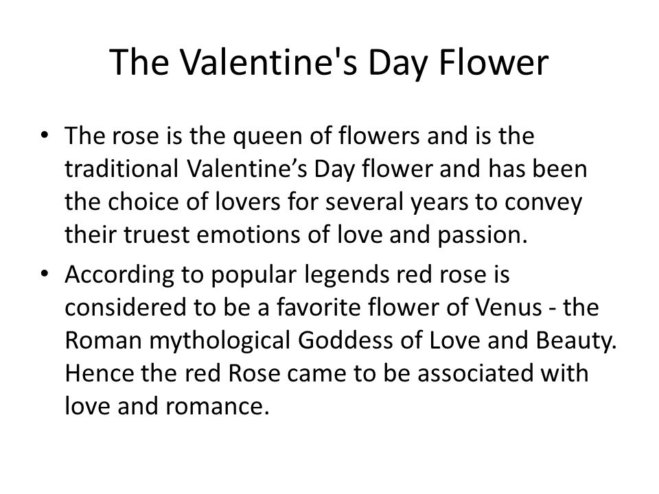 The Valentine s Day Flower