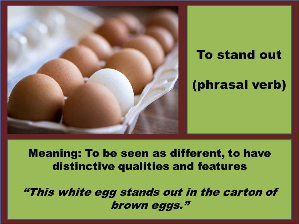 This white egg stands out in the carton of brown eggs.