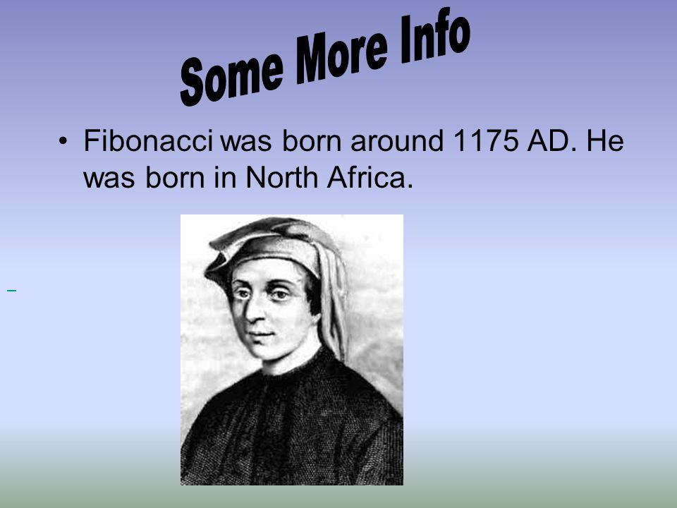 Some More Info Fibonacci was born around 1175 AD. He was born in North Africa.