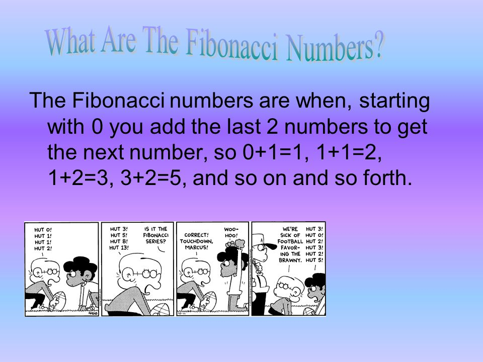 What Are The Fibonacci Numbers