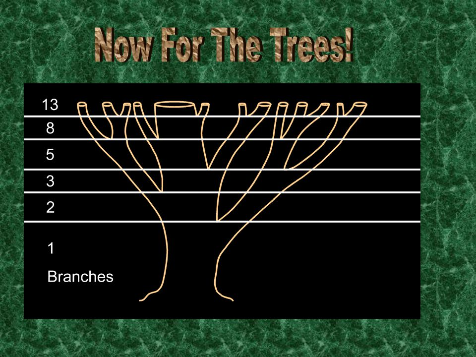 Now For The Trees!