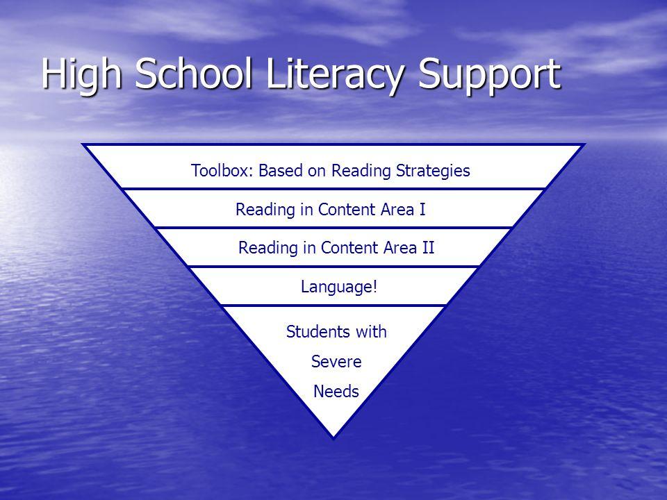 High School Literacy Support