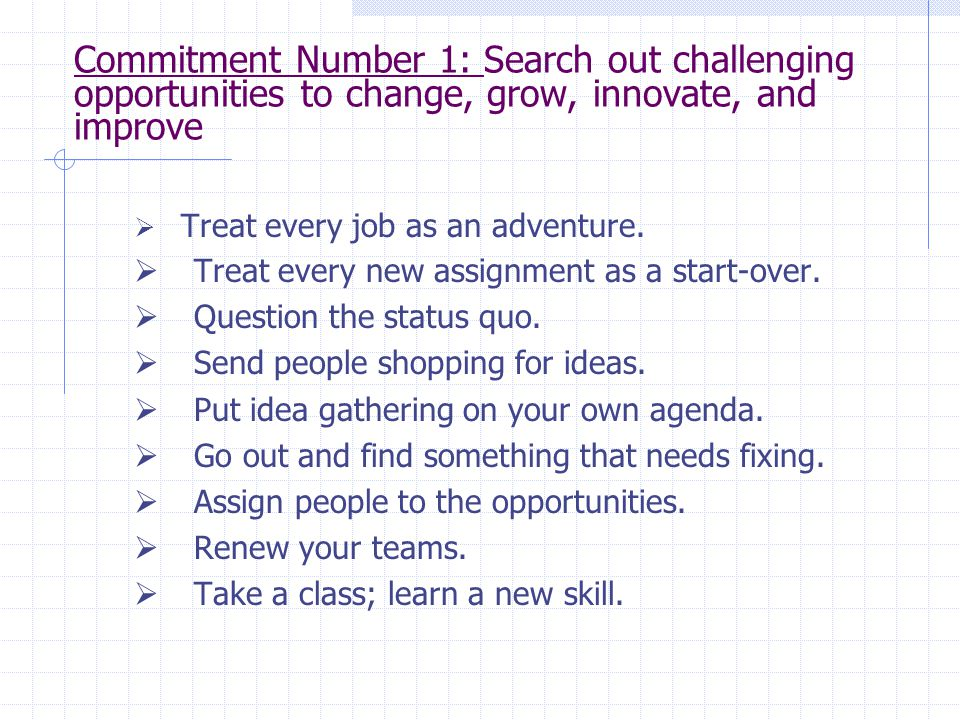 Commitment Number 1: Search out challenging opportunities to change, grow, innovate, and improve