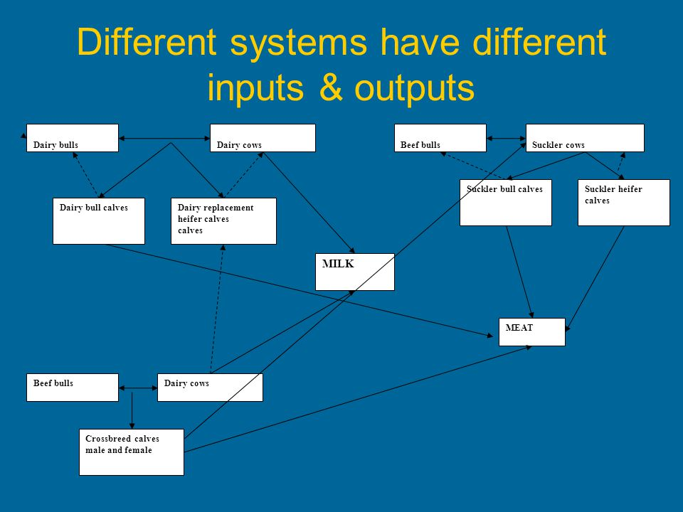 Different systems have different inputs & outputs