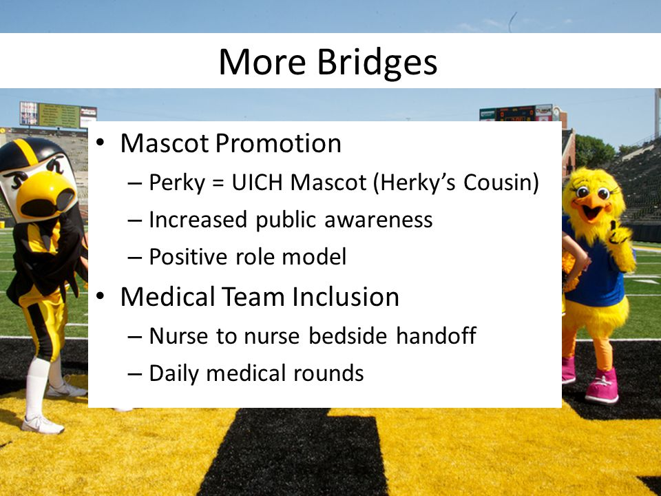 More Bridges Mascot Promotion Medical Team Inclusion