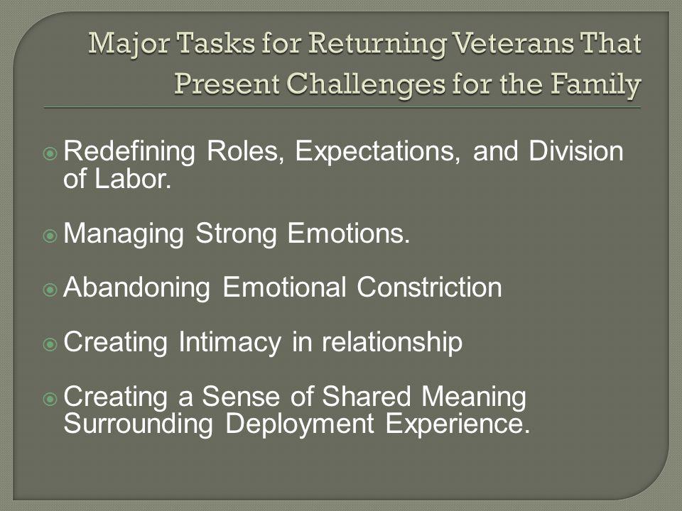 Major Tasks for Returning Veterans That Present Challenges for the Family