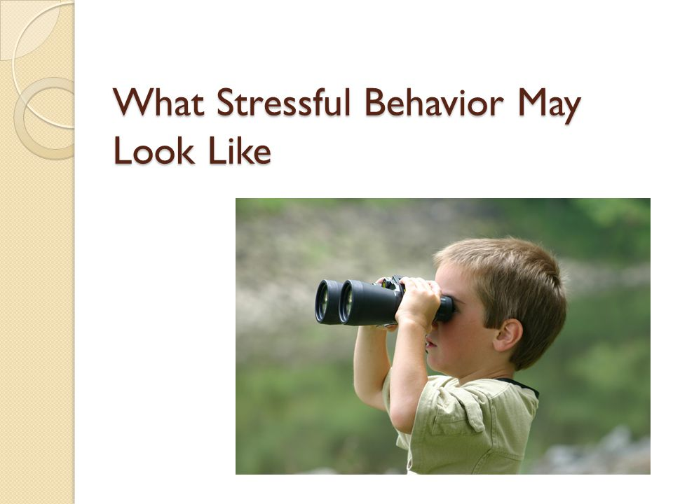 What Stressful Behavior May Look Like