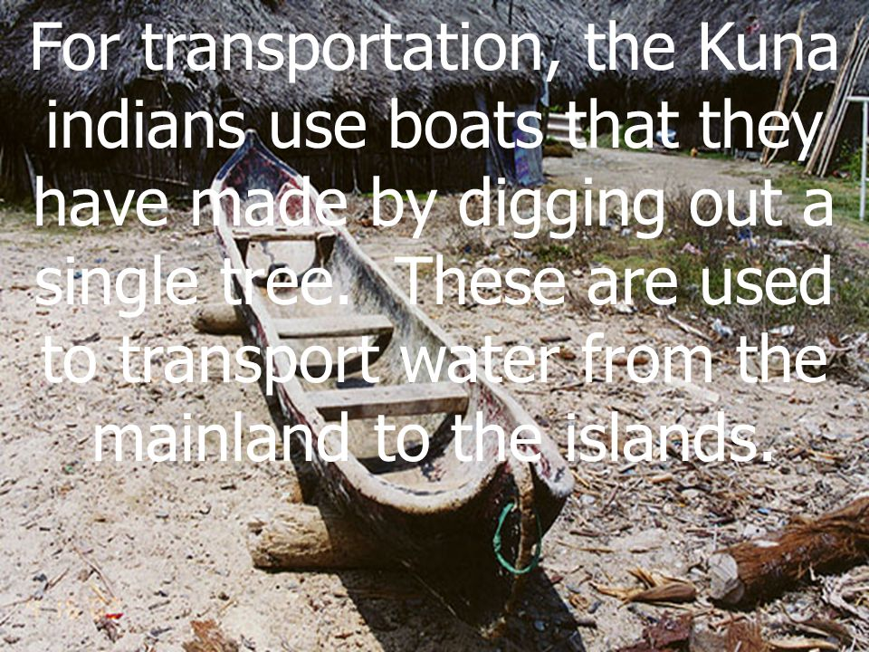 For transportation, the Kuna indians use boats that they have made by digging out a single tree.