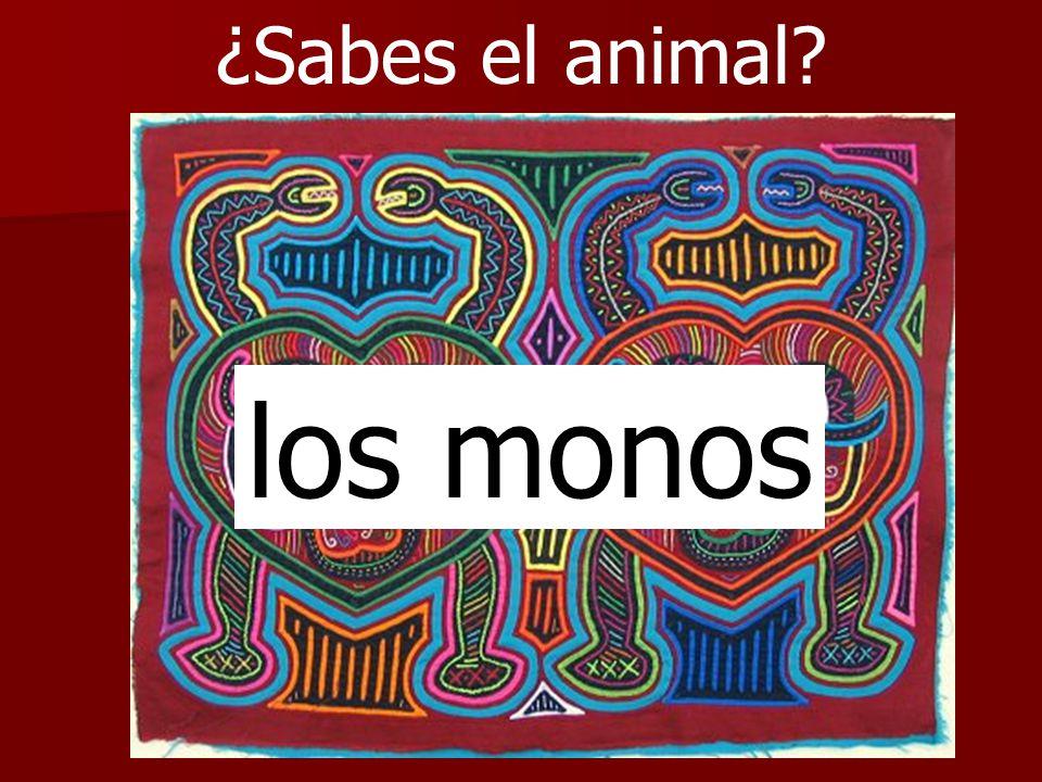 ¿Sabes el animal los monos