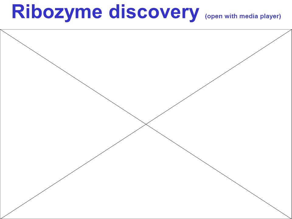 Ribozyme discovery (open with media player)