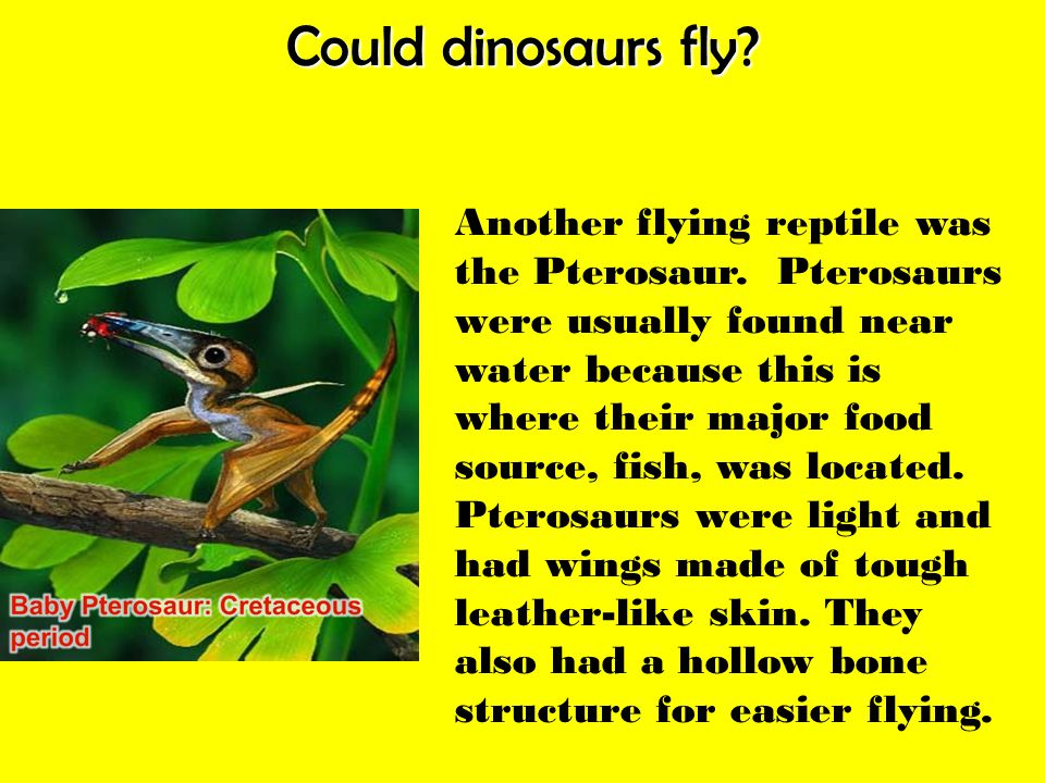 Could dinosaurs fly