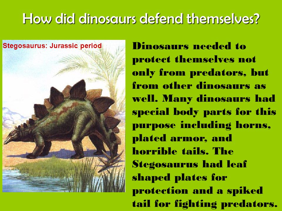 How did dinosaurs defend themselves