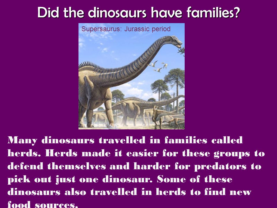 Did the dinosaurs have families