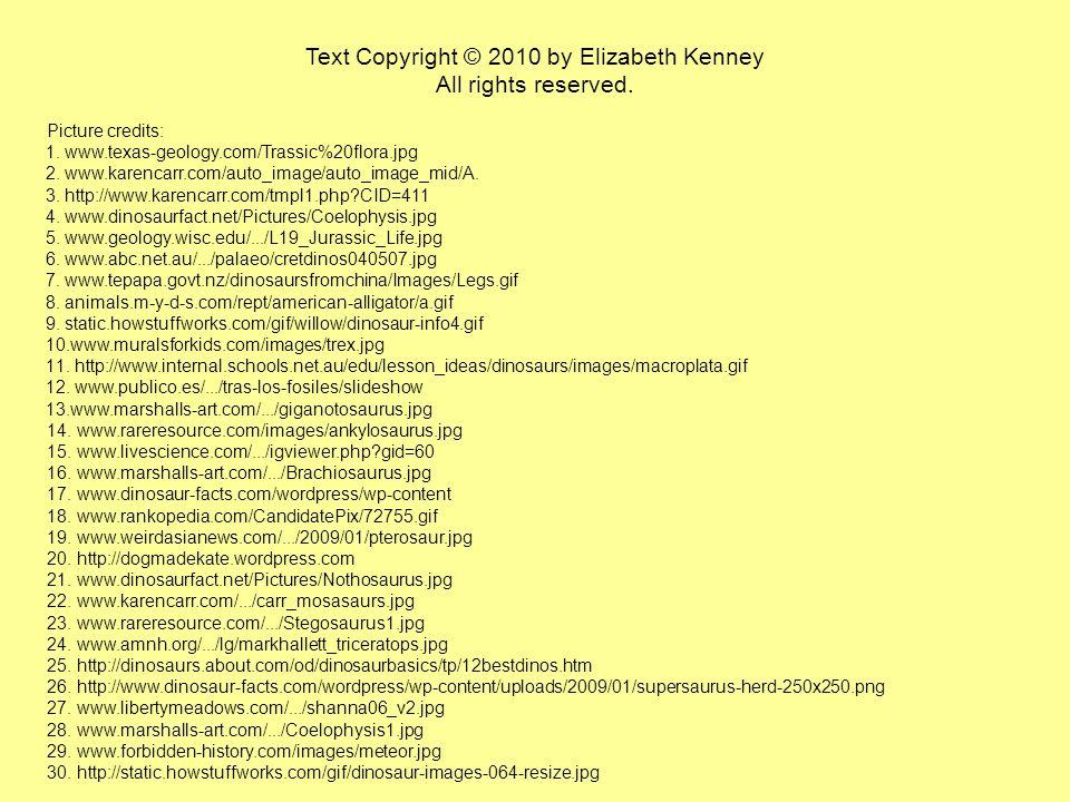 Text Copyright © 2010 by Elizabeth Kenney