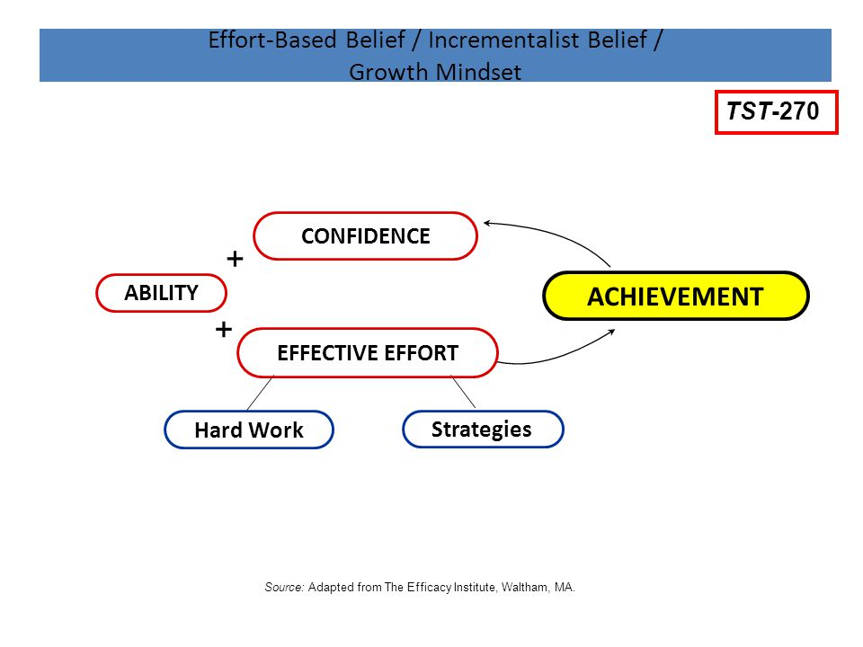 Effort-Based Belief / Incrementalist Belief / Growth Mindset