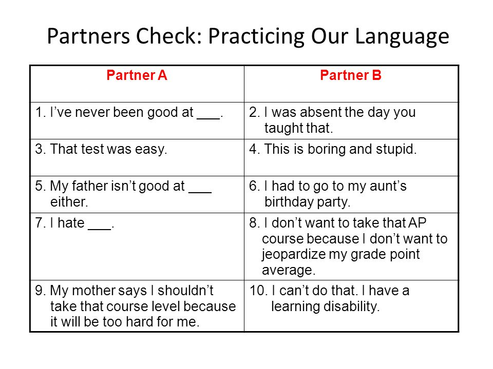 Partners Check: Practicing Our Language