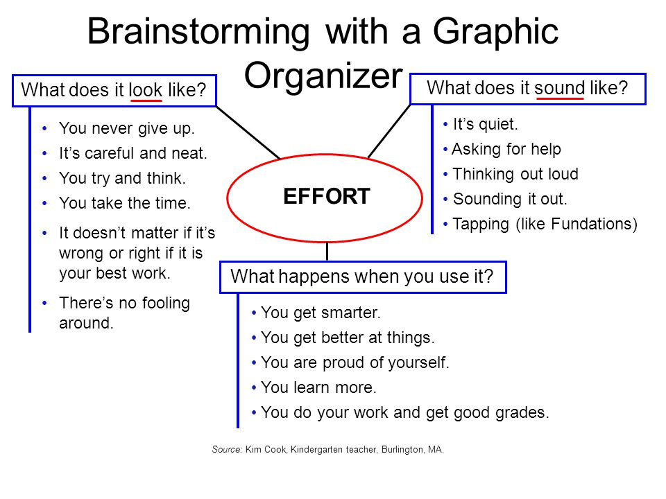 Brainstorming with a Graphic Organizer